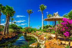 Tropical island resort garden with palm trees, flowers and river on Fuerteventura, Canary Island. Royalty Free Stock Images