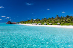 Tropical island with sandy beach. With palm trees and pristine water Royalty Free Stock Photography