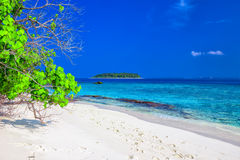 Tropical island with sandy beach, overwater bungalows and tourquise clear water, Maldives Royalty Free Stock Photography