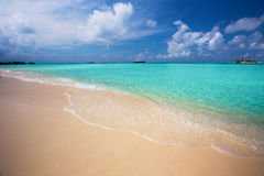 Tropical island with sandy beach and palm trees in Maldives Royalty Free Stock Photography