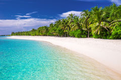 Tropical island with sandy beach and palm trees. Tropical island with sandy beach with palm trees and tourquise clear water Royalty Free Stock Image