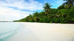 Tropical island with sandy beach with palm trees and tourquise clear water.  stock video