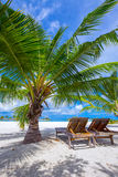 Tropical island with sandy beach, palm trees and tourquise clear water. Tropical island with sandy beach, palm trees and tourquise clear water Royalty Free Stock Photos