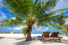 Tropical island with sandy beach, palm trees and tourquise clear. Water Stock Image