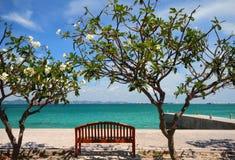 Tropical island scenic Stock Photography