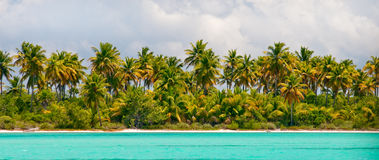 Tropical island - sea, sky and palm trees Royalty Free Stock Photos