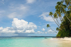 Tropical island - sea, sky and palm trees Royalty Free Stock Image