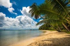 Tropical island - sea, sky and palm trees Stock Photo