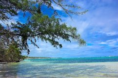 Tropical island in the sea royalty free stock images