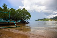Tropical island seashore. Mangrove forest landscape. Old fisherman boat abandoned on beach royalty free stock photos