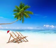 Tropical Island Summer Beach Coconut Concept Stock Photos