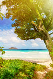 Tropical island on the sunny day Royalty Free Stock Photography