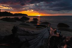 Tropical island sunset from beached log. stock photo