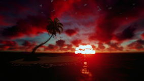 Tropical island surrounded by ocean with seagulls flying at sunrise stock video