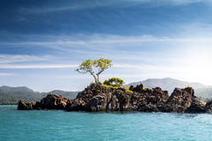 Tropical Island with Tree and Azure Ocean. Water Surface and Blue Sky stock photos