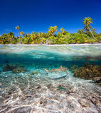 Tropical island under and above water Royalty Free Stock Image