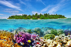 Tropical island and the underwater world Royalty Free Stock Photo