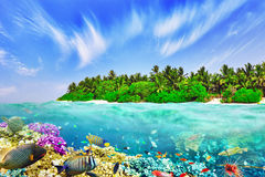 Tropical island and the underwater world Stock Photos