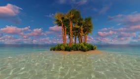 Tropical island vacation idyllic background Dusk stock video