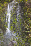 Tropical Island Waterfall Stock Photos