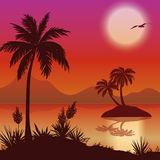 Tropical islands, palms, flowers and birds Stock Photo