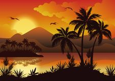 Tropical islands, palms, flowers and birds Royalty Free Stock Images