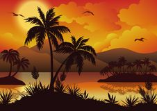 Tropical islands, palms, flowers and birds Royalty Free Stock Photos