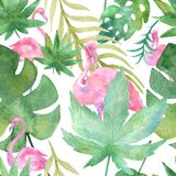Watercolor tropic drawing, rose bird and greenery palm tree, tropic green texture, exotic flower. Stock Illustration