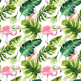 Tropical isolated seamless pattern with flamingo. Watercolor tropic drawing, rose bird and greenery palm tree, tropic Royalty Free Stock Image