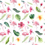 Tropical isolated seamless pattern with flamingo. Watercolor tropic drawing, rose bird and greenery palm tree, tropic. Green texture, exotic flower. Aloha stock photography