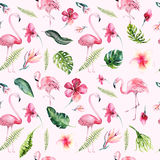 Tropical isolated seamless pattern with flamingo. Watercolor tropic drawing, rose bird and greenery palm tree, tropic. Green texture, exotic flower. Aloha vector illustration