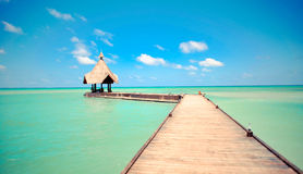Tropical jetty over sea. Tropical arrival jetty over turquoise sea with blue sky background, Maldives Stock Photography
