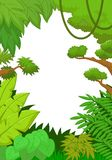 Tropical jungle background Royalty Free Stock Photography