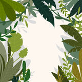 Tropical jungle background with palm trees and leaves in cartoon style. Stock Photos