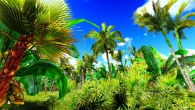 Tropical jungle 3d illustration Royalty Free Stock Images