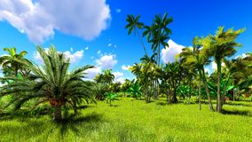 Tropical jungle during a day 3d rendering. Tropical jungle during a day stock image