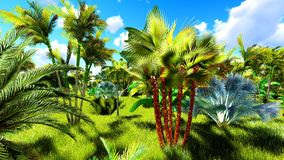 Tropical jungle during a day 3d rendering. Tropical jungle during a day royalty free stock photo