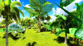 Tropical jungle during a day 3d rendering. Tropical jungle during a day stock images