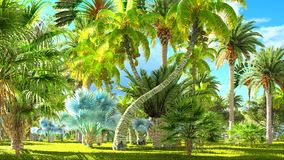 Tropical jungle during a day 3d rendering. Tropical jungle during a day stock photo