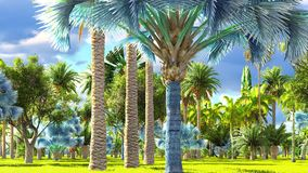 Tropical jungle during a day 3d rendering. Tropical jungle during a day royalty free stock photos