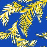 Tropical jungle floral seamless pattern background palm beach leaves. Royalty Free Stock Photo