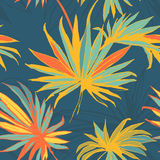 Tropical jungle floral seamless pattern background with palm le Royalty Free Stock Image