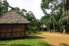 Tropical jungle house in Bolivia. Royalty Free Stock Image