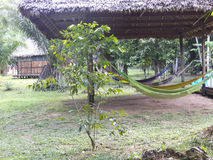 Tropical jungle house in Bolivia. Royalty Free Stock Photography