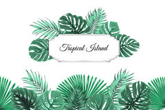 Tropical jungle island border frame header footer. Tropical island border frame template. Horizontal rectangle square box decorated with exotic jungle rain Stock Photos
