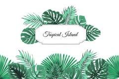 Tropical jungle island border frame header footer Stock Photos