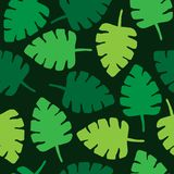 Tropical jungle leaves seamless pattern. Tropical palm leaf seamless pattern, vector illustration drawing of tropical leaves in green shades. Isolated pattern Stock Images