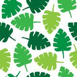 Tropical jungle leaves seamless pattern on white background. Tropical palm leaf seamless pattern, vector illustration drawing of tropical leaves in green shades Stock Image