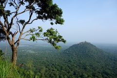 Tropical Jungle Mountain Peak Pidurangala with Tree. A classic image from a steep mountain peak of Sigiriya looking out at Pidurangala peak with a tree looking stock images