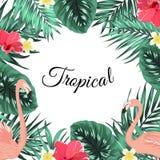 Tropical jungle palm leaves flamingo flowers frame Stock Photo